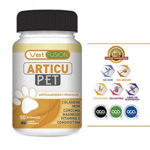 Potente Antiinflamatorio, Protector y Regenerador Articular para perros y gatos